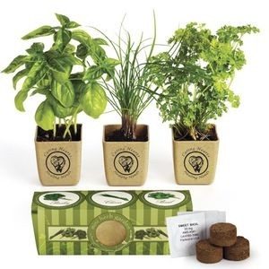 GrowPot Eco-Planter Herb 3-Pack